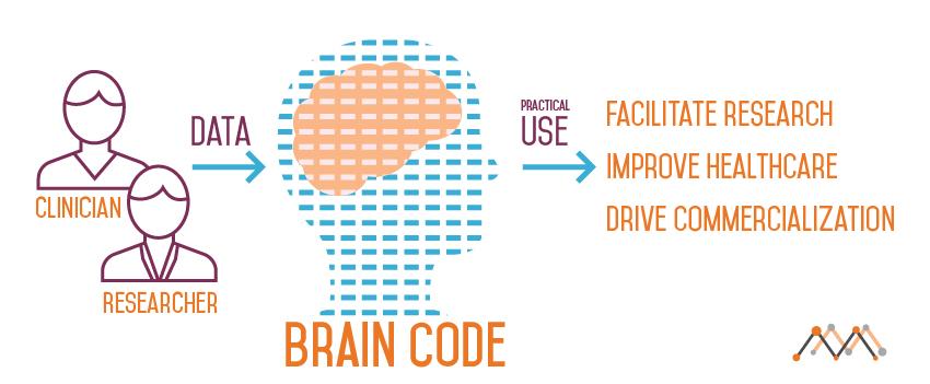 braincode.multimension